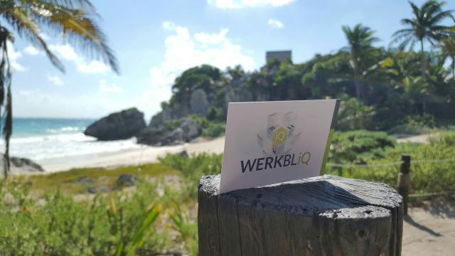 WERKBLiQ Summer Release