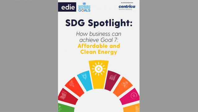 SDG Spotlight: How businesses can achieve Goal 7 - Clean and affordable energy
