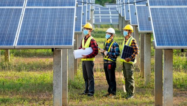 Renewables will overtake gas and coal globally in 2024, IEA predicts