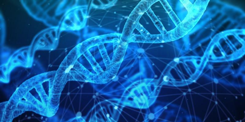 Mit Konzepten aus der Biologie von den Auswirkungen einer komplexen, volatilen Umwelt profitieren