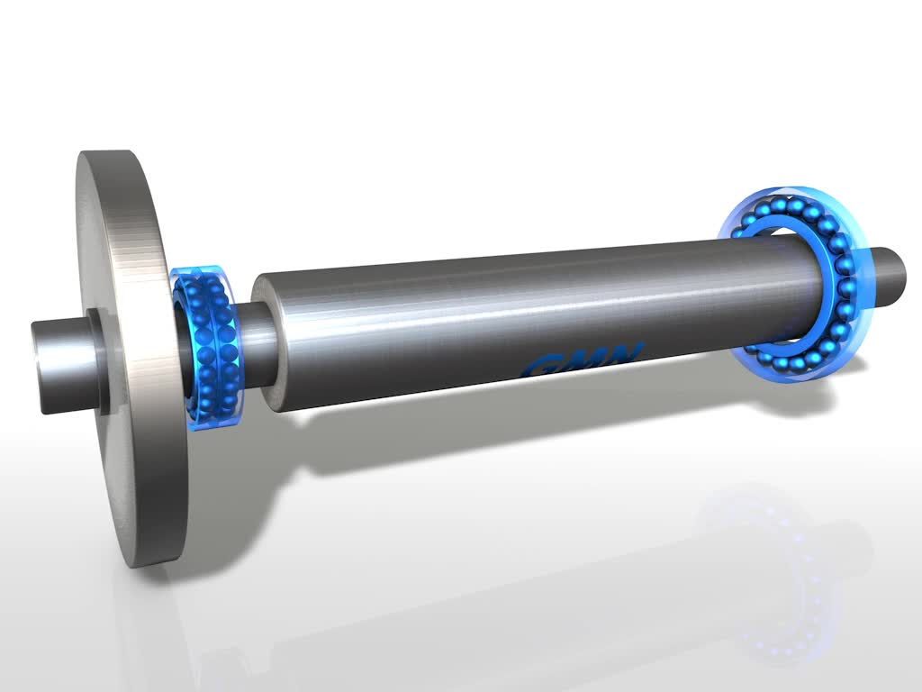 Touchdown bearings
